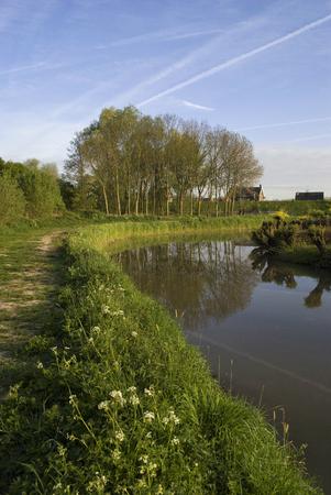 Photo pour Nature reserve Avelingen - image libre de droit