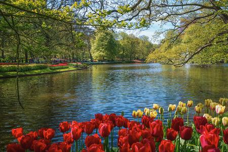 Photo pour View of the lake in the Keukenhof park, Netherlands. - image libre de droit