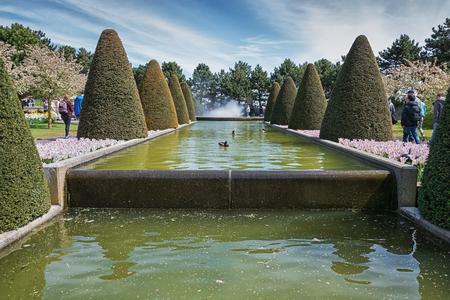 Photo pour Multi-colored species of flower fields in Keukenhof park, Netherlands. - image libre de droit
