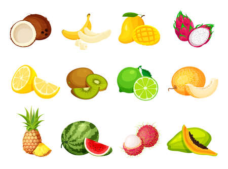 Illustration pour Collection of exotic tropical fruits in a trendy cartoon style. Vegan food vector icons isolated on white background. Fresh whole, half, cut slice and piece of fruit. - image libre de droit