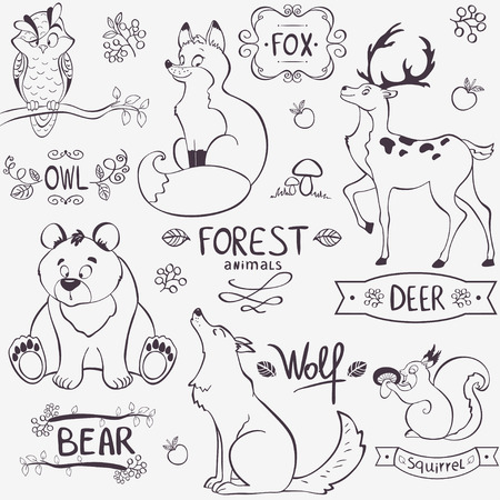 Illustration set of cute animals of the forest with design namesのイラスト素材
