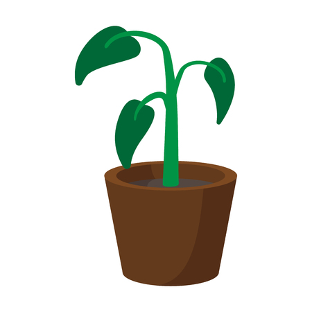 House plant in pot cartoon icon on a white background