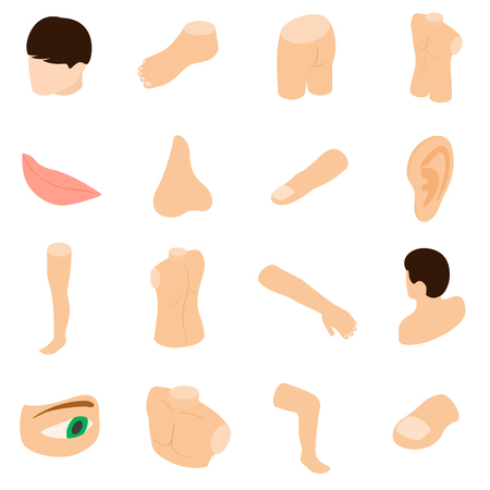 Body parts icons set in isometric 3d style isolated on white background
