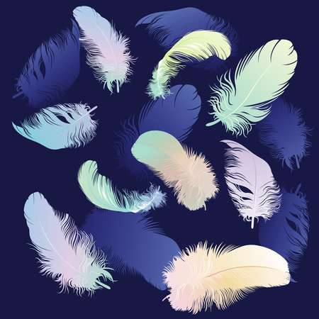 Colored Feather Set,  illustration