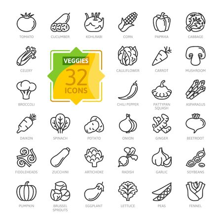 Ilustración de Vegetarian, vegetable, veggies - minimal thin line web icon set. Cucumber, kohlrabi, cauliflower, pattypan squash, fiddleheads, daikon. Outline icons collection. - Imagen libre de derechos