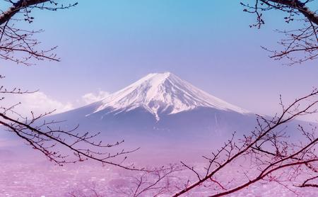 Foto de Mountain Fuji in winter framed by dry fall tree in pink color - Imagen libre de derechos