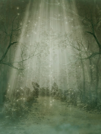 Fantasy forest with fog and big trees