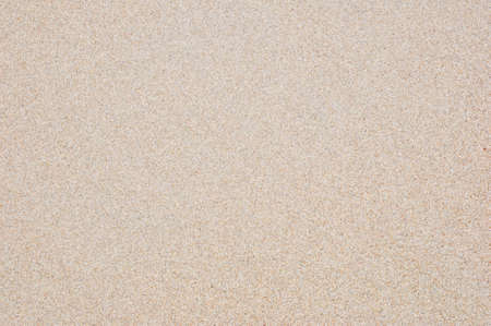 the texture of fine sand for design and background