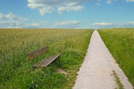 A wide open footpath on a shiny bright day.