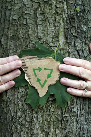 Environmental conservation concept: Hands holding green leaf and recycling symbol on recycled cardboard while hugging a tree