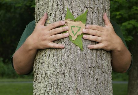 Person wrapping their arms around a tree holding a leaf and a recycling symbol on recycled cardboard