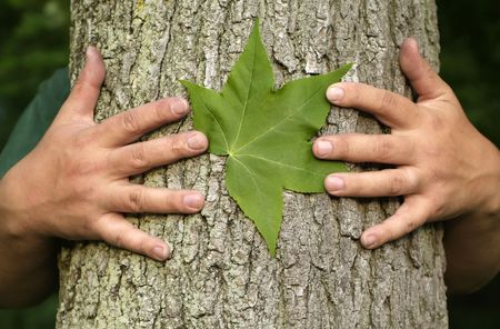 Earth Day Concept: Eco minded person hugging a tree with a green leaf between their hands.
