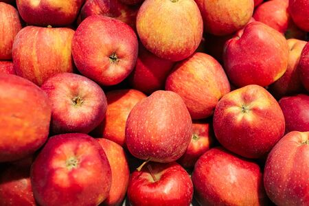 Photo for agriculture Fruit apples in the store - Royalty Free Image