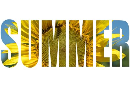 Summer-word with sunflower texture