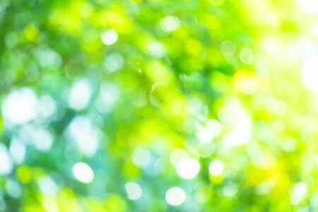 Foto de Abstract background Natural green bokeh - Imagen libre de derechos