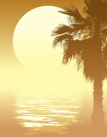 Illustration pour Tropical sunset with palm tree on a beach.  - image libre de droit