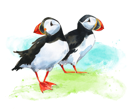 Two hand painted watercolor puffins on grass