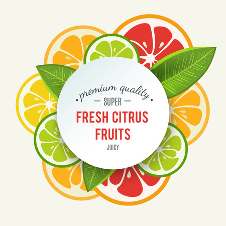 Illustration pour Banner with stylized citrus fruit and splashes. Grapefruit, lime, lemon and orange. Citrus mix isolated on white background can be used for cafe menu design. Bright stylish juicy icon design. Vector - image libre de droit