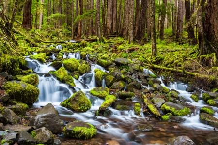 cascade waterfall in nationa