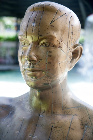 Chinese facial acupuncture points diagram portrait