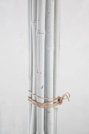 white bamboo on white