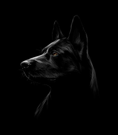 Illustration for Portrait of a black shepherd dog on a black background - Royalty Free Image