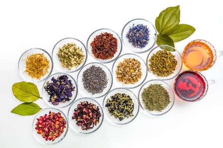 Photo pour Beautiful Herbal Tea Colorful Herb Tea - image libre de droit