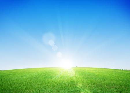 Endless green grass field and deep blue sky background