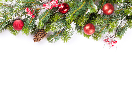 Christmas tree branch with snow and baubles. Isolated on white background with copy space