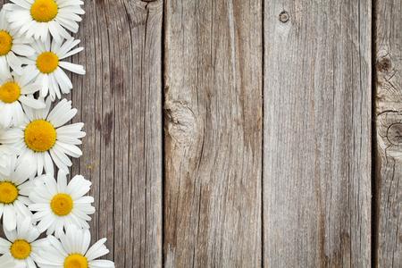 Photo pour Daisy chamomile flowers on wooden background. Top view with copy space - image libre de droit