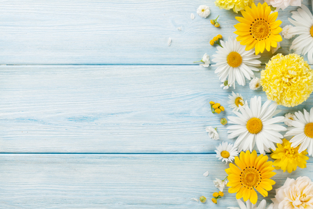 Garden flowers over blue wooden table background. Backdrop with copy spaceの写真素材