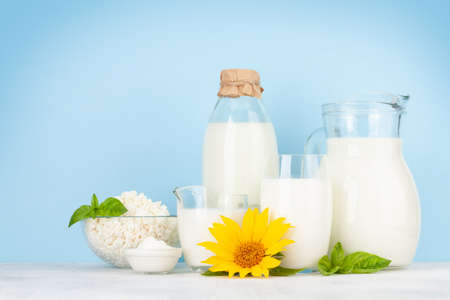Photo pour Various dairy products. Milk, cheese, cottage, sour cream. In front of blue background with copy space - image libre de droit