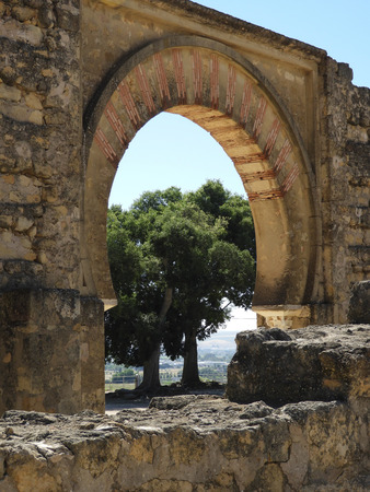 Photo pour Tree and arch against a backdrop of the countryside at Madinat Al Zahra (Madina Azahara) ancient moorish palace ruins on the outskirt of Cordoba, Spain - image libre de droit