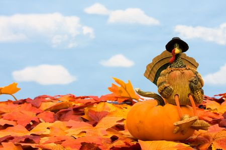 Fall leaves with a turkey and a gourd on a sky background, fall borderの写真素材