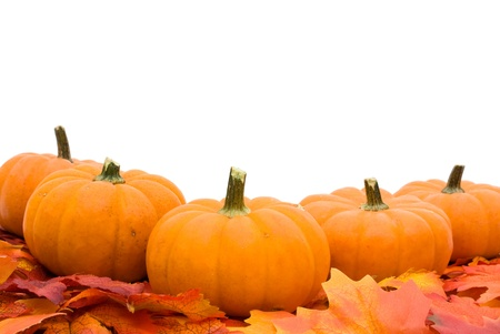 Fall leaves with a pumpkin isolated on a white background, fall leaves borderの写真素材