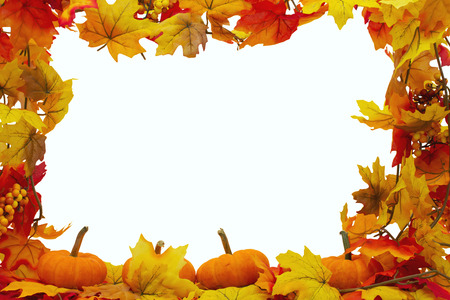 Photo for Autumn Leaves and Pumpkins Background, Autumn Leaves isolated on white with space for your message - Royalty Free Image