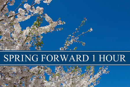 Photo pour A tree in full bloom with blue sky and text Spring Forward 1 Hour - image libre de droit