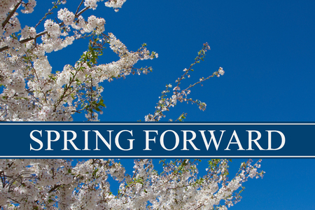 Photo pour A tree in full bloom with blue sky and text Spring Forward - image libre de droit