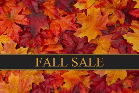 Foto de Fall Sale Message, Fall Leaves Background and text Fall Sale - Imagen libre de derechos