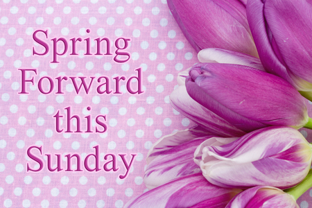 Photo pour Spring Forward message, A bouquet of purple tulips on pink polka dots with text Spring Forward this Sunday - image libre de droit