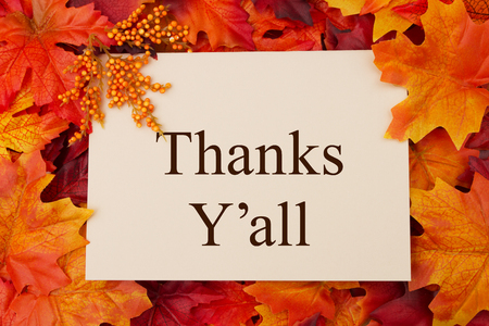 Photo pour Thank You Greeting Card, Some fall leaves and a greeting card with text Thanks Y'all - image libre de droit