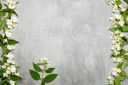 Beautiful white jasmine flowers on gray concrete background