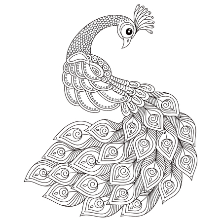 Illustration pour Peacock. Adult antistress coloring page. Black and white hand drawn doodle for coloring book. Isolated on white background - image libre de droit
