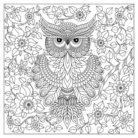 Illustration for Coloring book for adult and older children. Coloring page with cute owl and floral frame. Outline drawing in zentangle style - Royalty Free Image