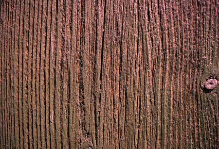 untreated wood