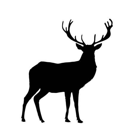 Illustration for Black silhouette of reindeer with big horns isolated on white background. Vector illustration, icon, clip art, sign, symbol of deer for design.  - Royalty Free Image