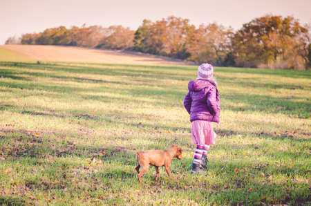 Photo pour little child holding domestic cat and walking alone in sunny autumnal atmosphere - image libre de droit