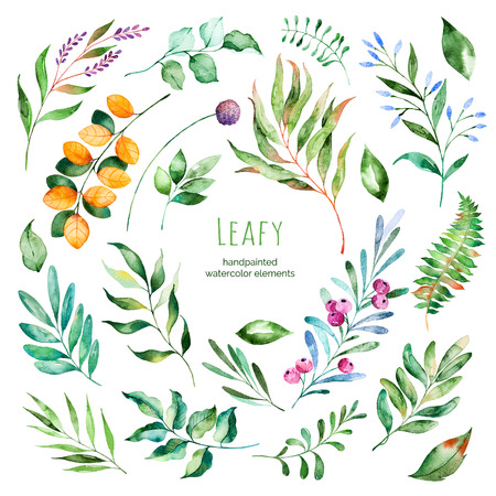 Photo pour Leafy collection.22 Handpainted floral watercolor elements.Watercolor leaves, branches, berries, foliage.Perfect for you single projects, template, wedding invitations, greeting cards, graphic, quotes, poster - image libre de droit