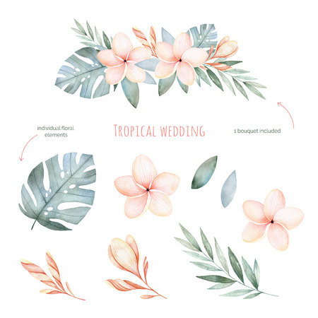 Tropical Wedding floral set.Beautiful soft floral collection with leaves and flowers (tropical leaves, plumeria) .Watercolor individual Elements + 1 pastel colored bouquet.Perfect for wedding invitations.