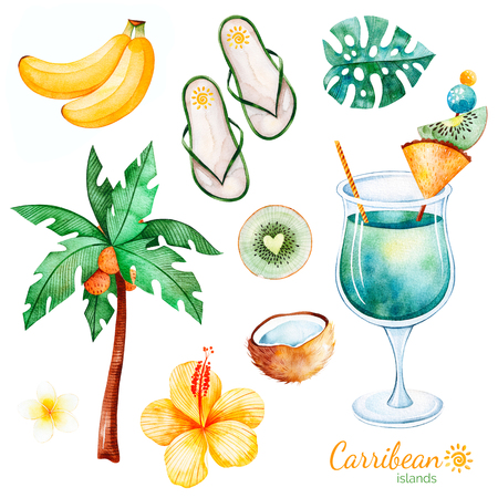 Foto de Summer collection with exotic fruits, plum tree, hibiscus flower, tropical leaf, plumeria flower, cocktail, flat slippers shoes.Perfect for wedding, invitations, greeting card, quotes, pattern, logos, wedding etc. - Imagen libre de derechos